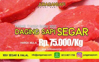 suplier-jual-daging-sapi-murah-2017