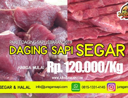 Promo Jual Paket Daging Sapi Segar Lebaran 2019