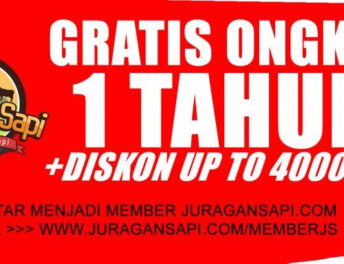 Info pendaftaran member Juragansapi.com